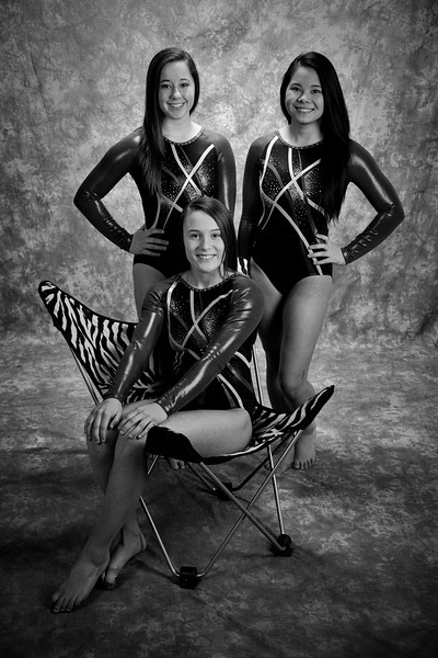 H.S. Senior Gymnasts 2014
